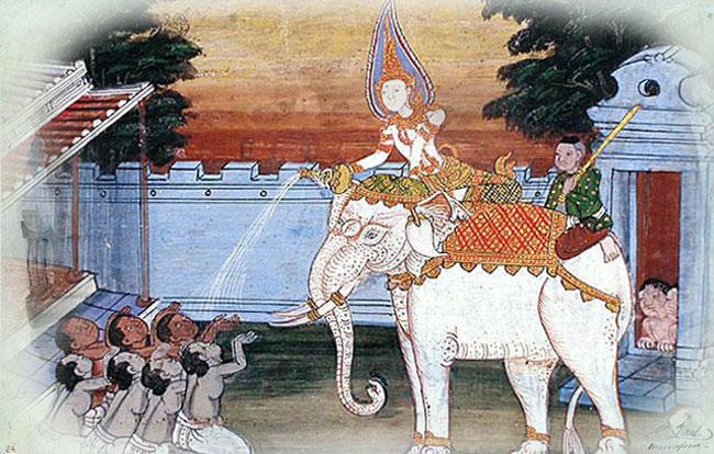 فیل سفید