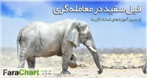 فیل سفید در معامله گری
